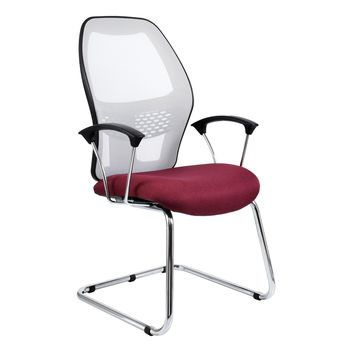 Xenon Visitors Chair with Netted Back